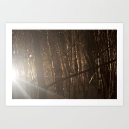 Show your light. Art Print