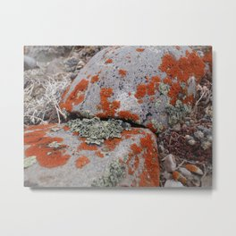 Wyoming Rocks Metal Print