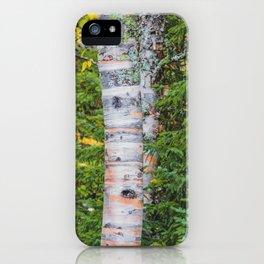 Artist Point Trail, Grand Marais, Minnesota 25 iPhone Case