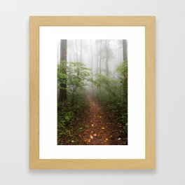 Adventure Ahead - Foggy Forest Digital Nature Photography Framed Art Print