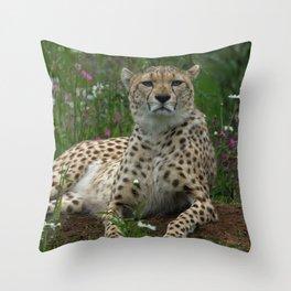 Cheetah Amidst Spring Flowers Throw Pillow
