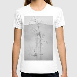 Misty trees. Mammoth Paradise. Foggy sunrise. BW T-shirt