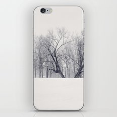 Into the Blizzard iPhone & iPod Skin