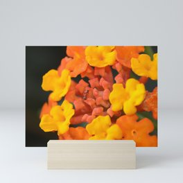 Orange and Yellow Mini Art Print