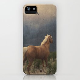 Across the sands iPhone Case