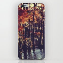 Autumn Cypress iPhone Skin