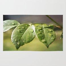 Fresh Dew Drops Rug