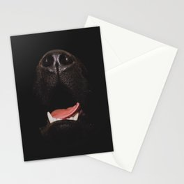 Nosey. Stationery Cards
