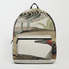 Green winged Teal from Birds of America (1827) by John James Audubon etched by William Home Lizars Backpack