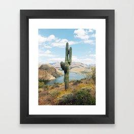 Arizona Saguaro Framed Art Print