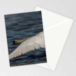 Lift off Stationery Cards
