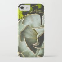 succulent iPhone & iPod Cases featuring Succulent by Olivia Joy StClaire