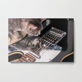Kittycaster Metal Print