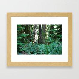Where the Faeries Live Framed Art Print