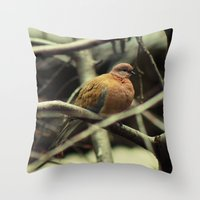pigeon Throw Pillows featuring Pigeon by Zura
