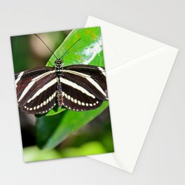 Butterfly Magic Stationery Cards