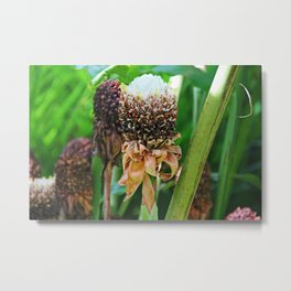 White Torch Metal Print