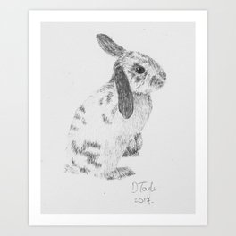 Rabbit pencil drawing Art Print