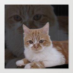 Dramatic Cat Canvas Print