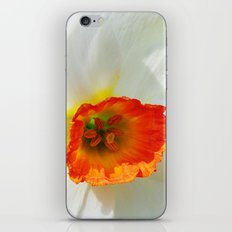 White Petals iPhone & iPod Skin