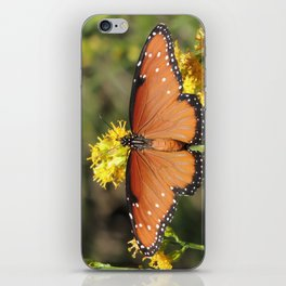 Queen Butterfly on Rubber Rabbitbrush in Claremont CA iPhone Skin