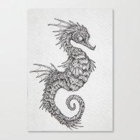 seahorse Canvas Prints featuring seahorse by Caitlin Hackett