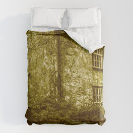 vintage grunge scenery 3 Comforters