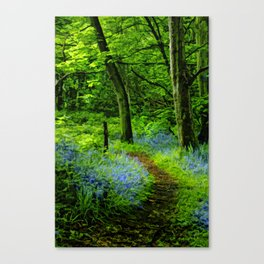 If you go down in the woods today. Canvas Print