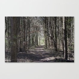 Our Special Trail Canvas Print