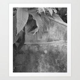 grave under leafs Art Print