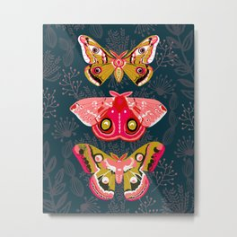 Lepidoptery No. 4 by Andrea Lauren Metal Print