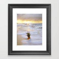 Pineapple Seabreeze Framed Art Print