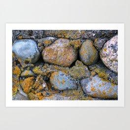 moss & stone Art Print