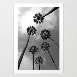 Tropical Darkroom #171 Art Print