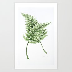 Two Ferns Art Print