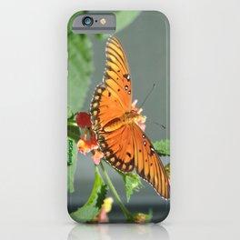Gulf Fritillary on Lantana iPhone Case