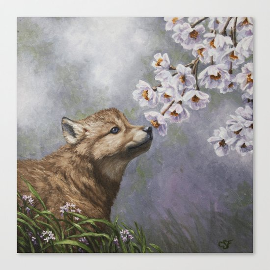 Wolf Pup and Spring Blossoms Canvas Print