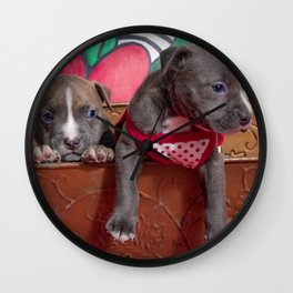 Cute Brother and Sister Pitbull Puppies with Blue Eyes Cuddling Together in a Spring Basket Wall Clock