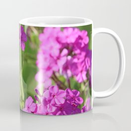 Fit For A Queen Coffee Mug