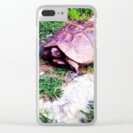 Ferrara Tartruga Clear iPhone Case