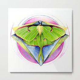 Actias luna - Luna Moth Metal Print