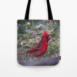 Male Red Cardinal Ohio Tote Bag