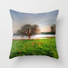 Nygren Wetlands Throw Pillow