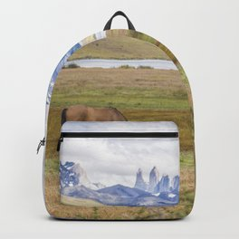 Torres del Paine - Wild Horses Backpack