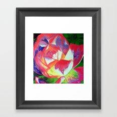 Radiant Rosa Framed Art Print