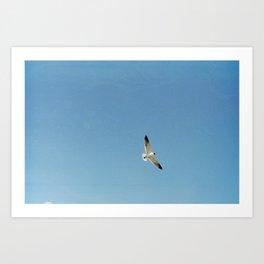 Flyer Higher Art Print