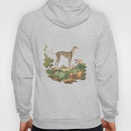 Running with the hounds. Hoody