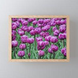 purple spring Framed Mini Art Print