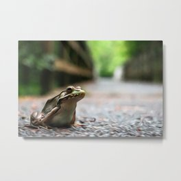 Frog Art One Metal Print