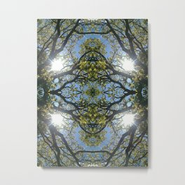 Enchanted Eye Metal Print
